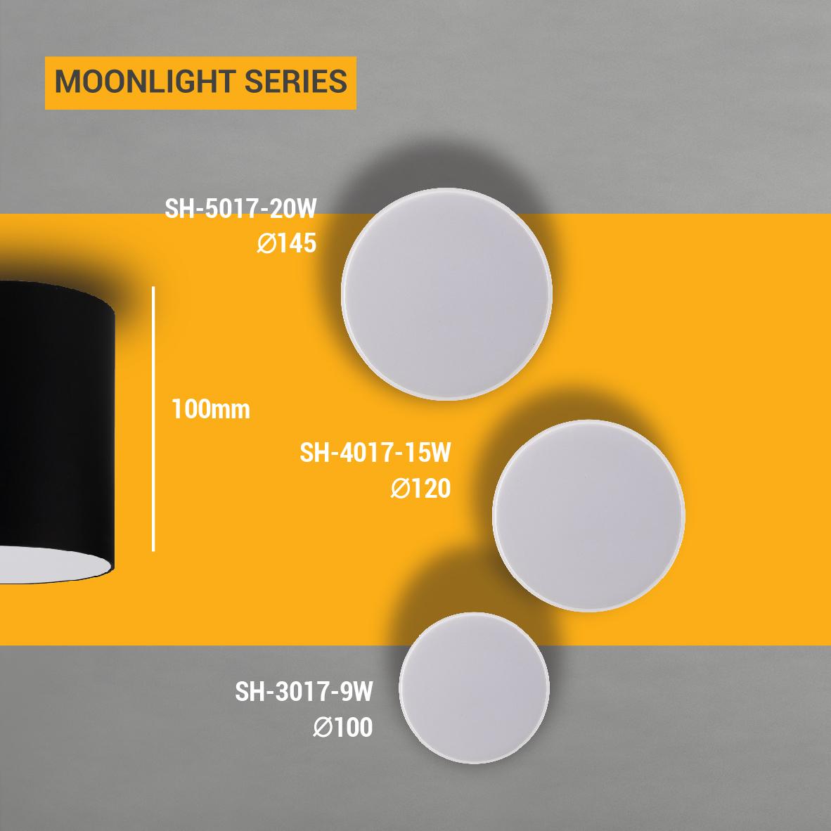چراغ هاى سقفى آویز-SH-3017S-9W